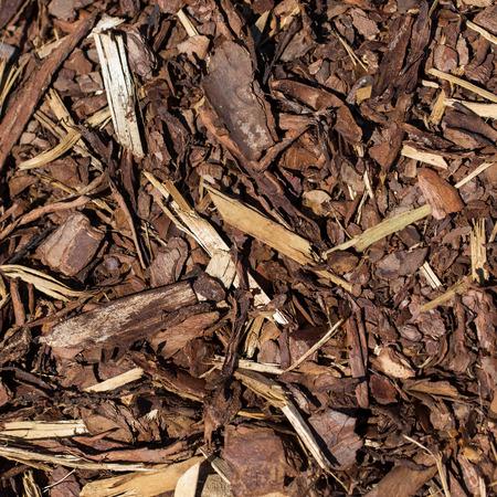 bark mulch: Wooden mulch grounds fragment