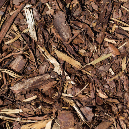 Wooden mulch grounds fragment