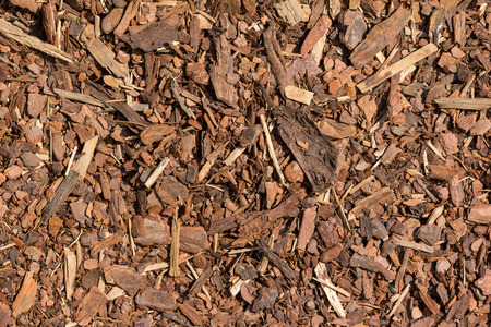 Mulch wood bark material seamless texture background Stock Photo