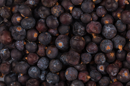 ribes: Dried black currant as a background, close up Stock Photo
