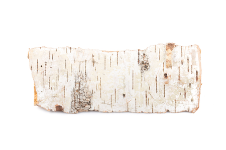 Birch firewood tree log on white background Banco de Imagens