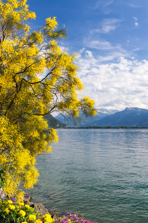 montreux: Mountains and lake Geneva from the Embankment in Montreux. Switzerland Stock Photo