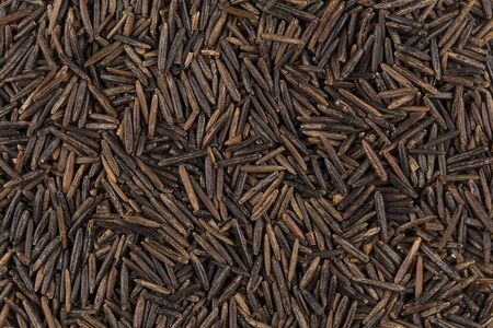 foodstuff: Background of black wild rice - close up image
