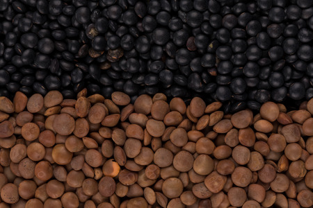 legumes: Mix of various color legumes lentils for background Stock Photo