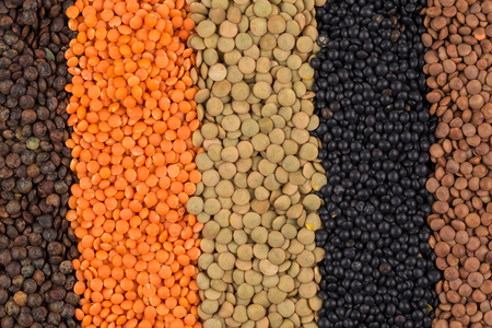 green brown: various legumes - red, black, yellow, green, brown lentils