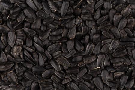 semen: Heap of black sunflower seeds as a background