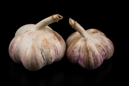 spiciness: Garlic bulb closeup isolated on dark stone background