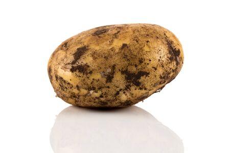 Fresh dirty potato isolated on a white background. Stok Fotoğraf