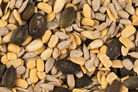 Portion of mixed seeds closeup as a background