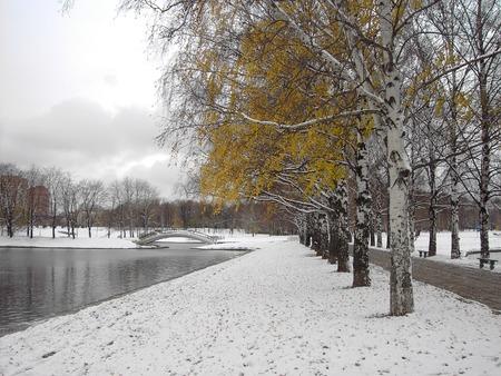 early melting snow, november, city park