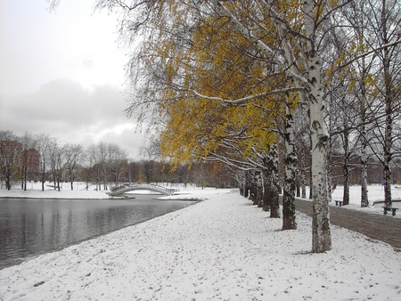 early melting snow, november, city park