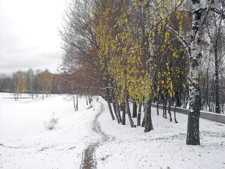 early melting snow, november, city park photo