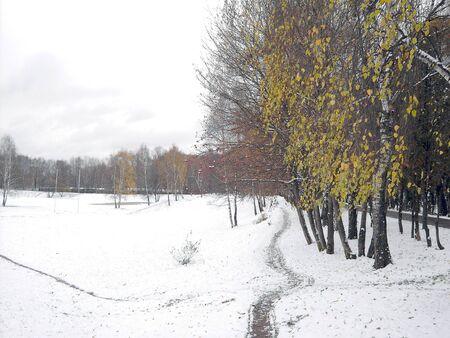 early melting snow, november, city park Stock Photo - 2112588