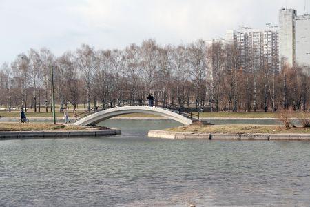 spring in city park, april photo
