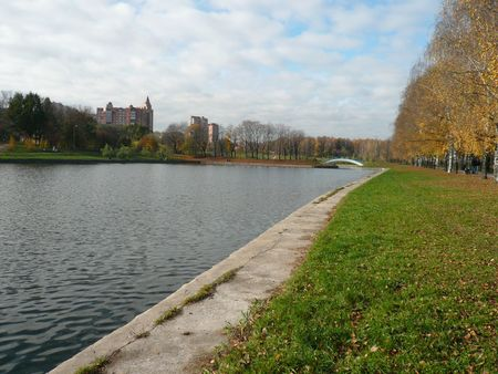 pond in city park at autumn photo
