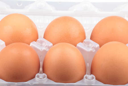 voids: chicken egg in plastic case