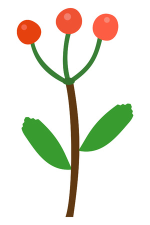 ashberry: red ashberry  illustration on white