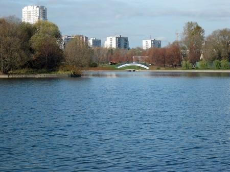 autumn in city park photo
