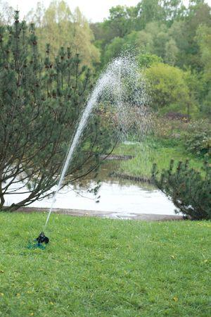 sprinkler in japan garden at spring photo
