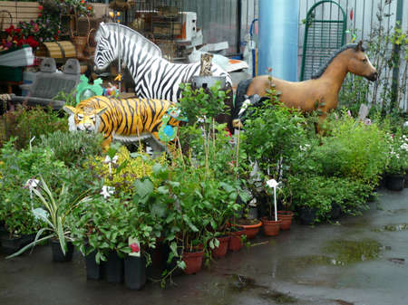 toy animals in garden at day photo