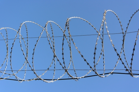 barbwire on sky background Stock Photo - 14877481