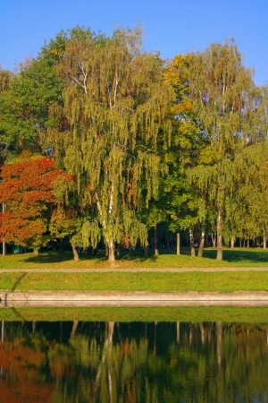 parc de la ville � l'automne d'or photo