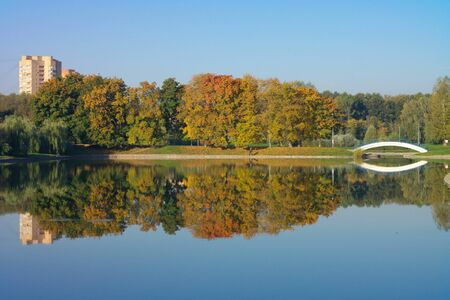 mirrored: park in gold fall