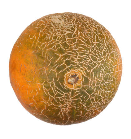 Melon Isolated photo