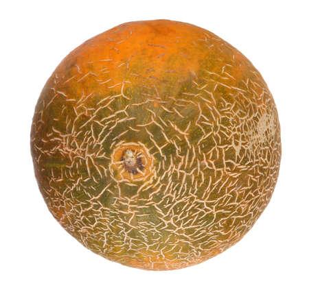 Melon Isolated photo