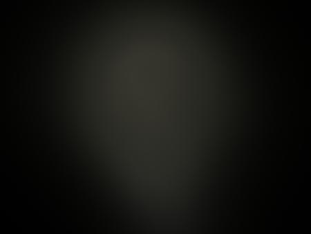 fine art: Digital Fractal on Black