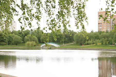 mirror image: summer park