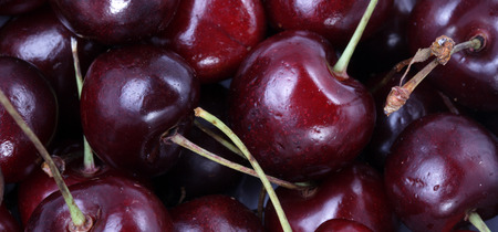 many sweet cherry at day Imagens - 113676236