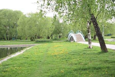 spring in city park