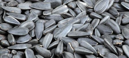 many of sunflower seeds background Stock Photo
