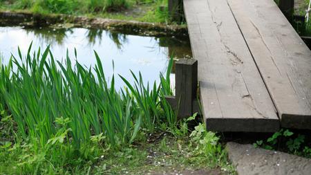 japan garden by Nakajima in moscow Stock Photo