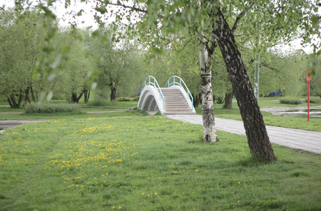 summer in city park at day 스톡 콘텐츠
