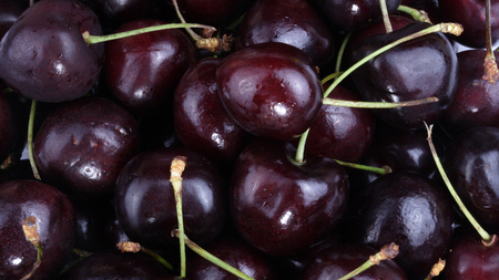 many sweet cherry at day Imagens - 119106095