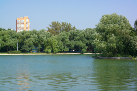 summer in city park