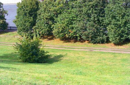 path in park Reklamní fotografie