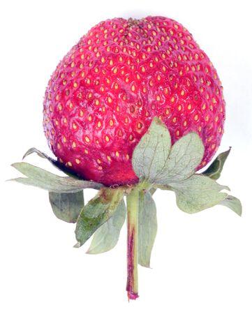 one raw red Strawberry