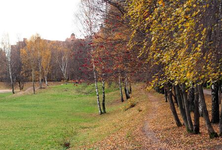 park in autumn at daiy time