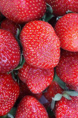 many Strawberry 스톡 콘텐츠