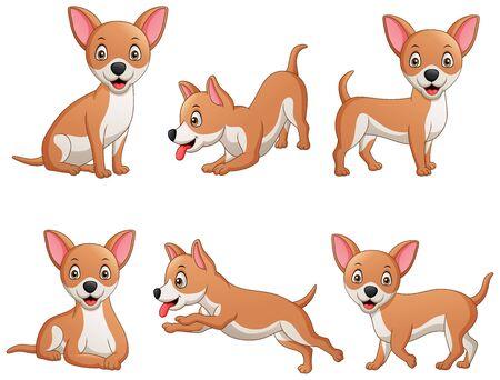 Set of funny chihuahua dog cartoon. Vector illustration 向量圖像