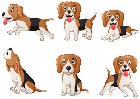 Set of beagle dog cartoon. Illustration