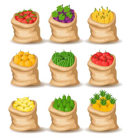 Set of fruits Organic Fresh, in the sack. Vector illustration