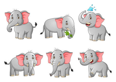 Set of cute elephant cartoon. Vector illustration Stock Illustratie