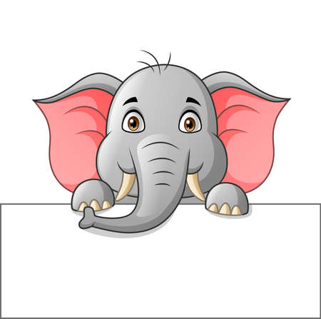 Cute elephant cartoon with white blank paper. Vector illustration
