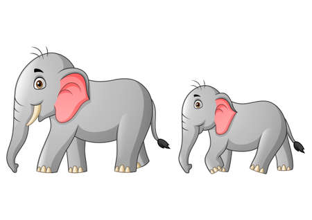 Cute mother and child elephant cartoon. Vector illustration