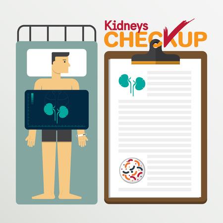checkup: Kidneys infographic in flat design. Medical checkup clipboard. Vector Illustration.