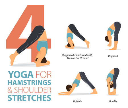 4 Yoga poses or asana posture for workout in Hamstrings and Shoulder concept. Women exercising for body stretching. Fitness infographic. Flat cartoon vector